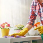 House Cleaning Services in Gastonia, North Carolina