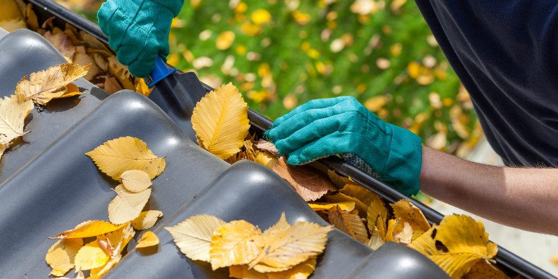 Fall Cleaning in Charlotte, North Carolina
