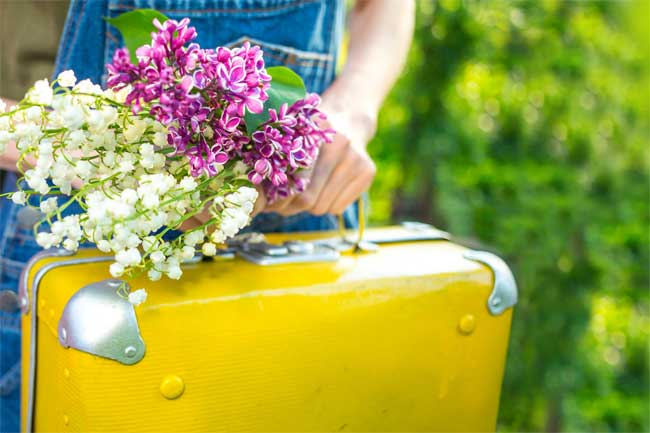 Cleaning Services for Preparing for House Guests